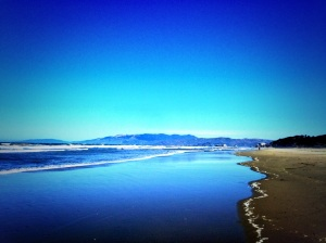 A majestic view of Ocean Beach in San Francisco.